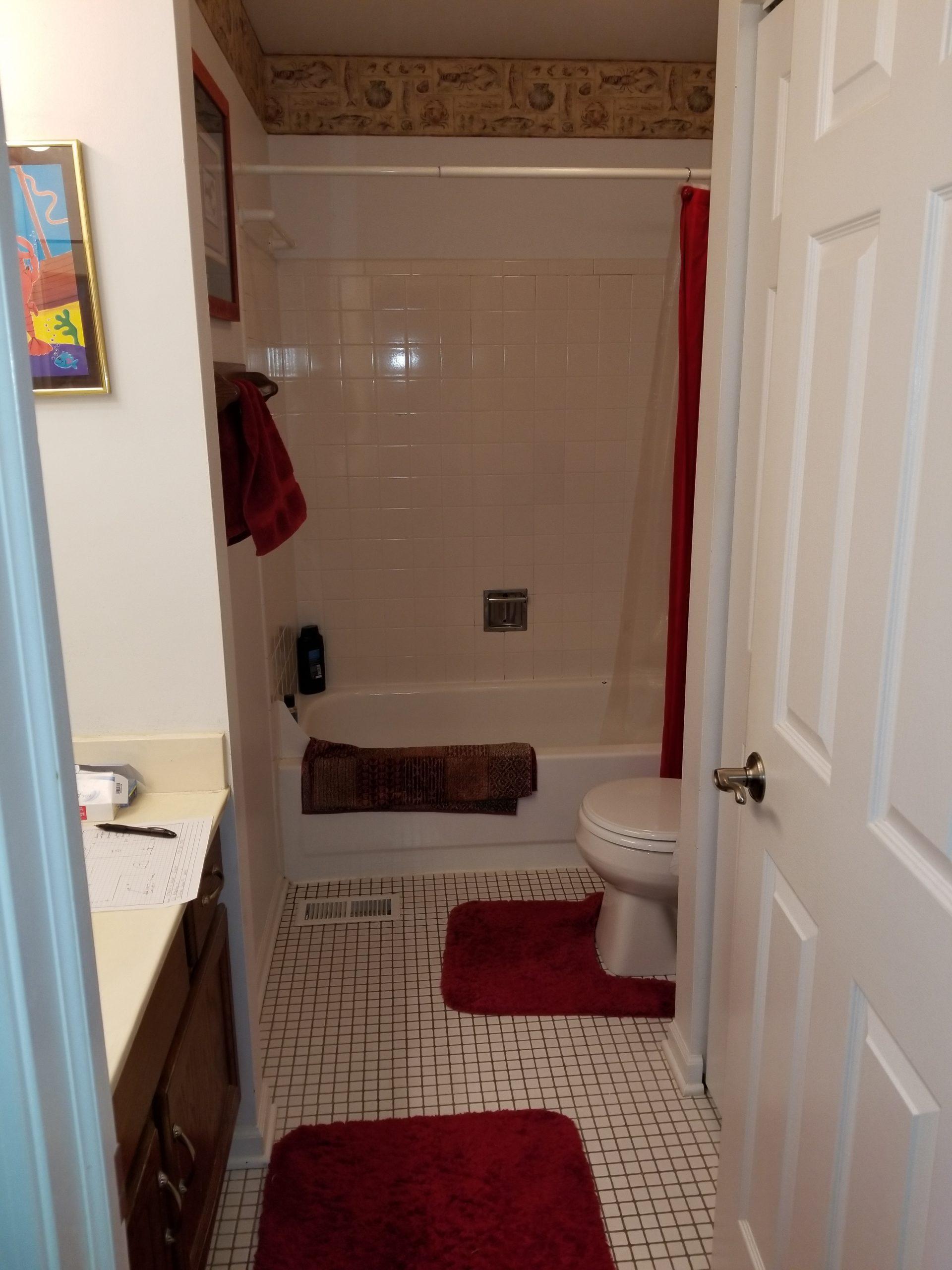 Before | Buffalo Grove, IL Bathroom