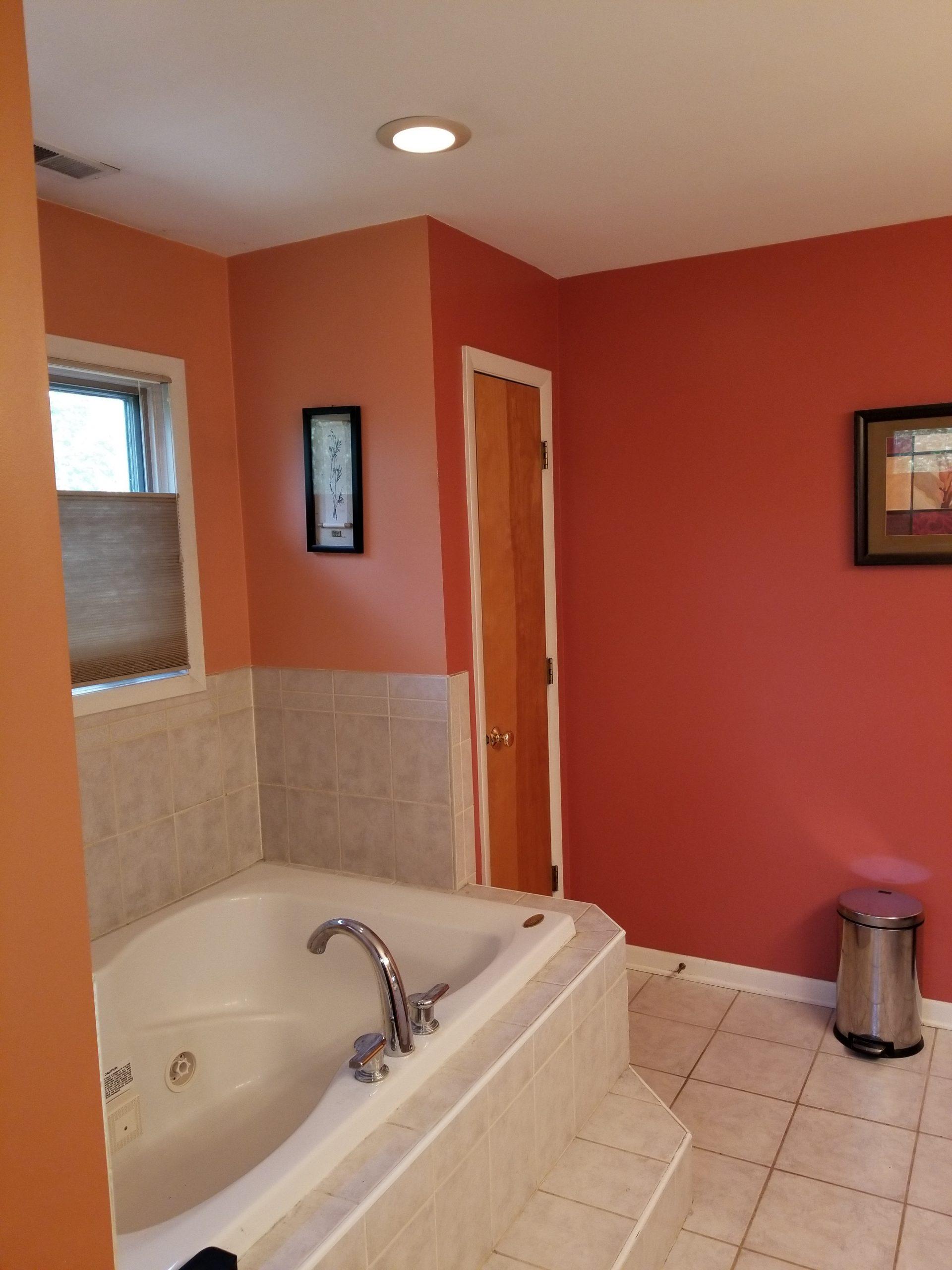 Before | Glenview, IL Master Bathroom Reomdel