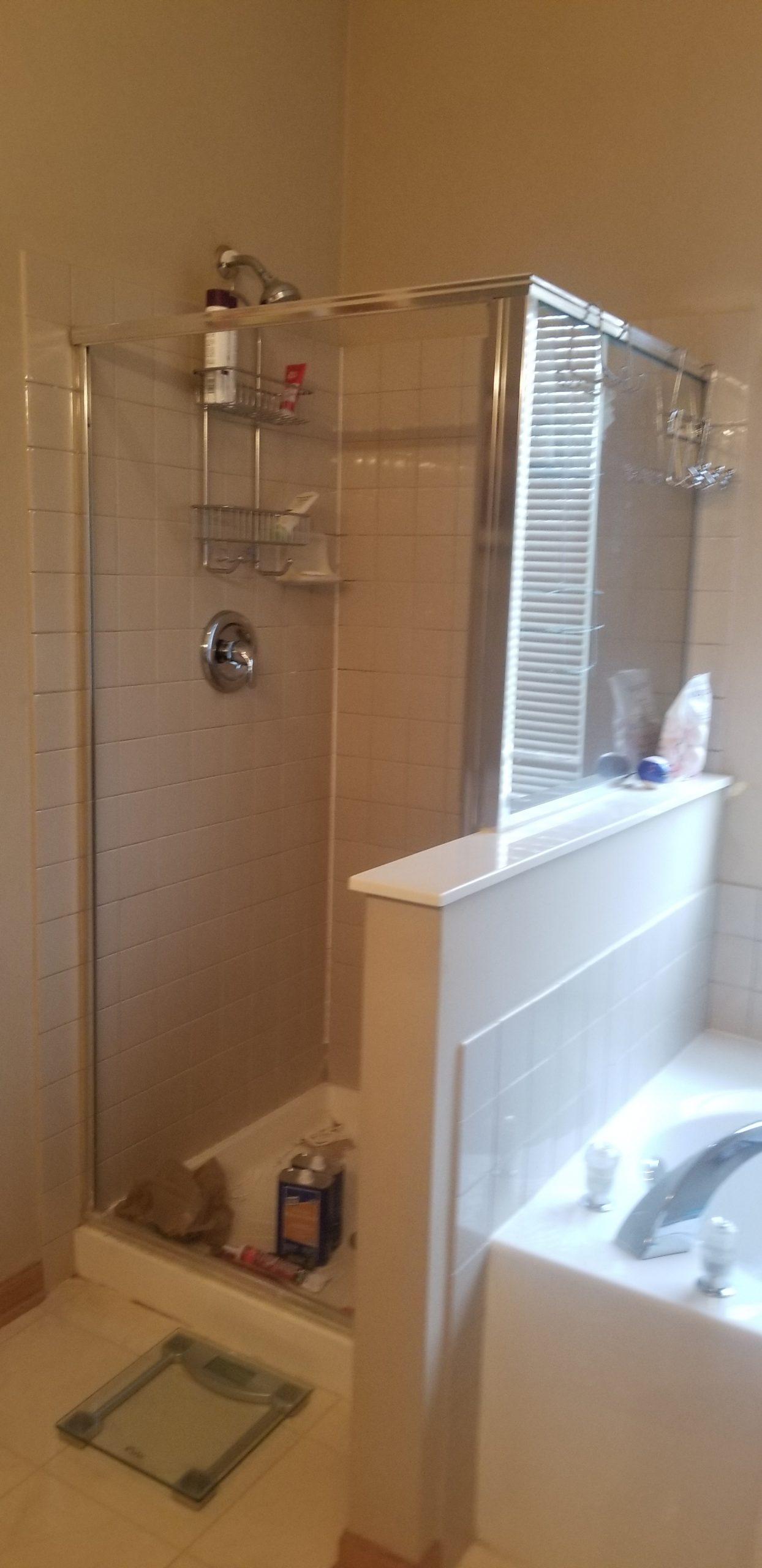 Before | Bartlett Master Bathroom